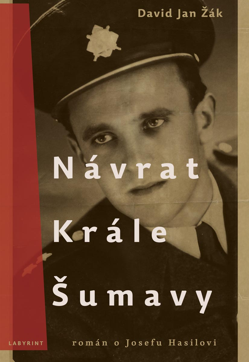 media/covers/b/d/1f/Navrat-Krale-Sumavy.jpg